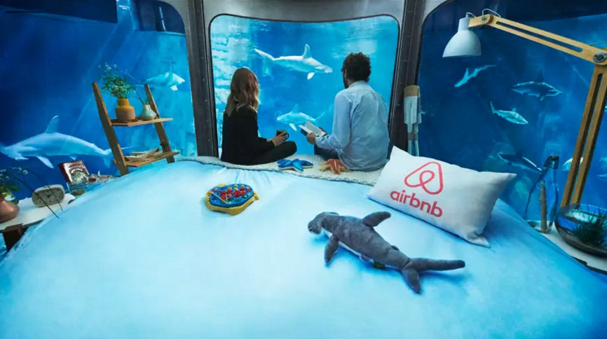 The Shark Aquarium on AirBnB