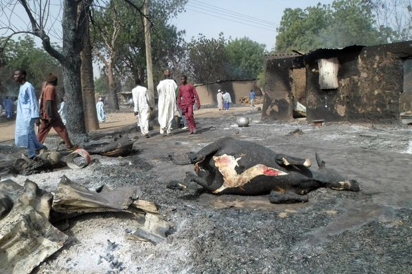 People walk past the burnt carcass of a cow after Boko Haram attacks at Dalori village on the outskirts of Maiduguri, Nigeria, on January 31, 2016.