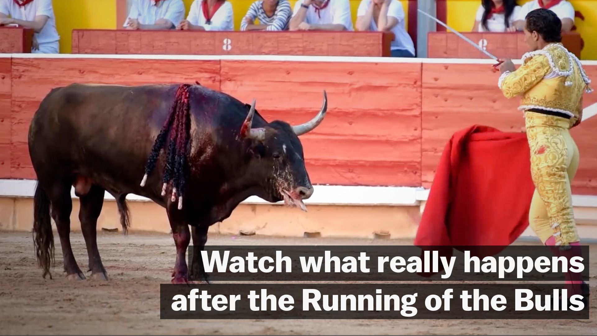 its time to put down the hemingway and accept that the running of the bulls is horrifying vox