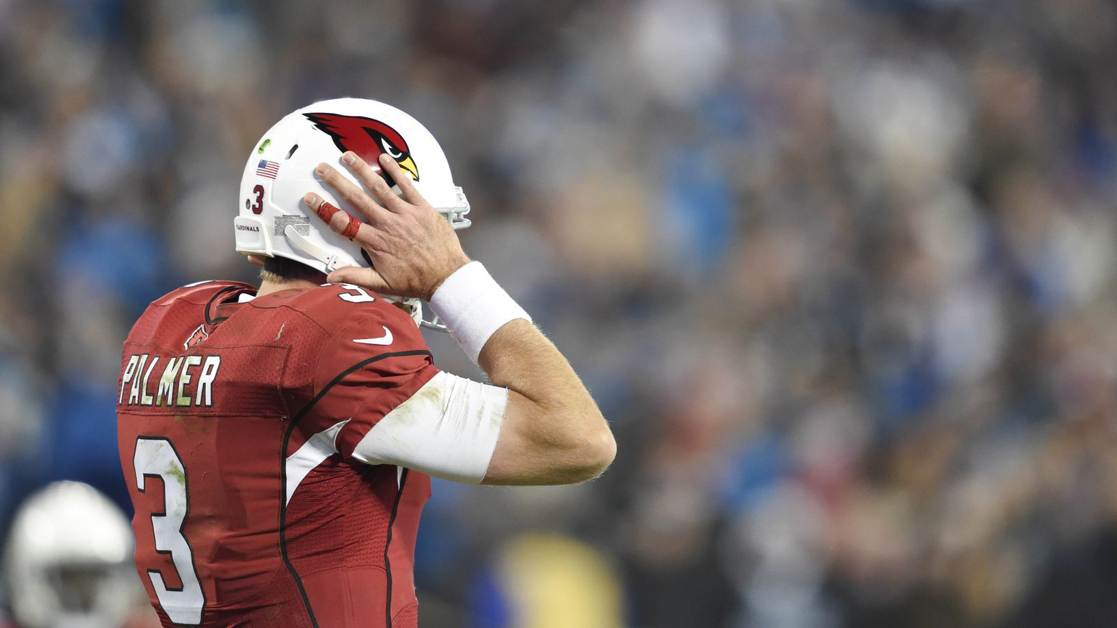 cardinals vs panthers box score nfl odds and lines