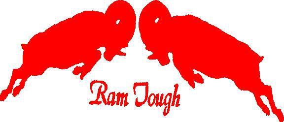 Wholesale NFL Jerseys - Random Ramsdom: December 28: St. Louis Rams - Lowering The Boom On ...
