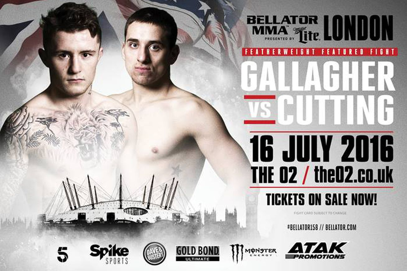 community news, Bellator 158: Conor McGregor training partner, James Gallagher, ready to step out of shadow on Spike TV
