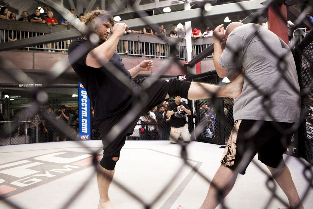 Roy Nelson to face Derrick Lewis at UFC Fight Night 90