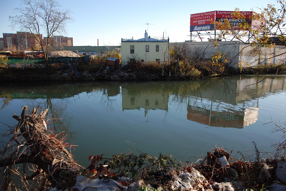 coney island 39 s untamed creek caught between past future
