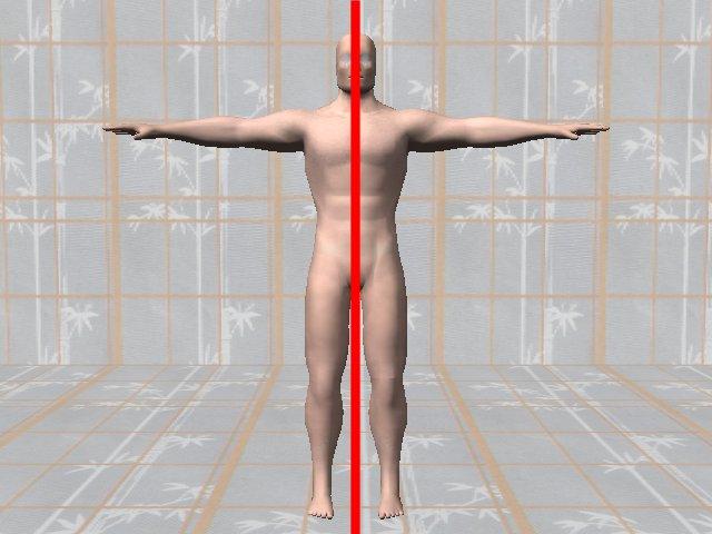 BodySymmetryDiagnosis-SymmetricBody.0.jpg