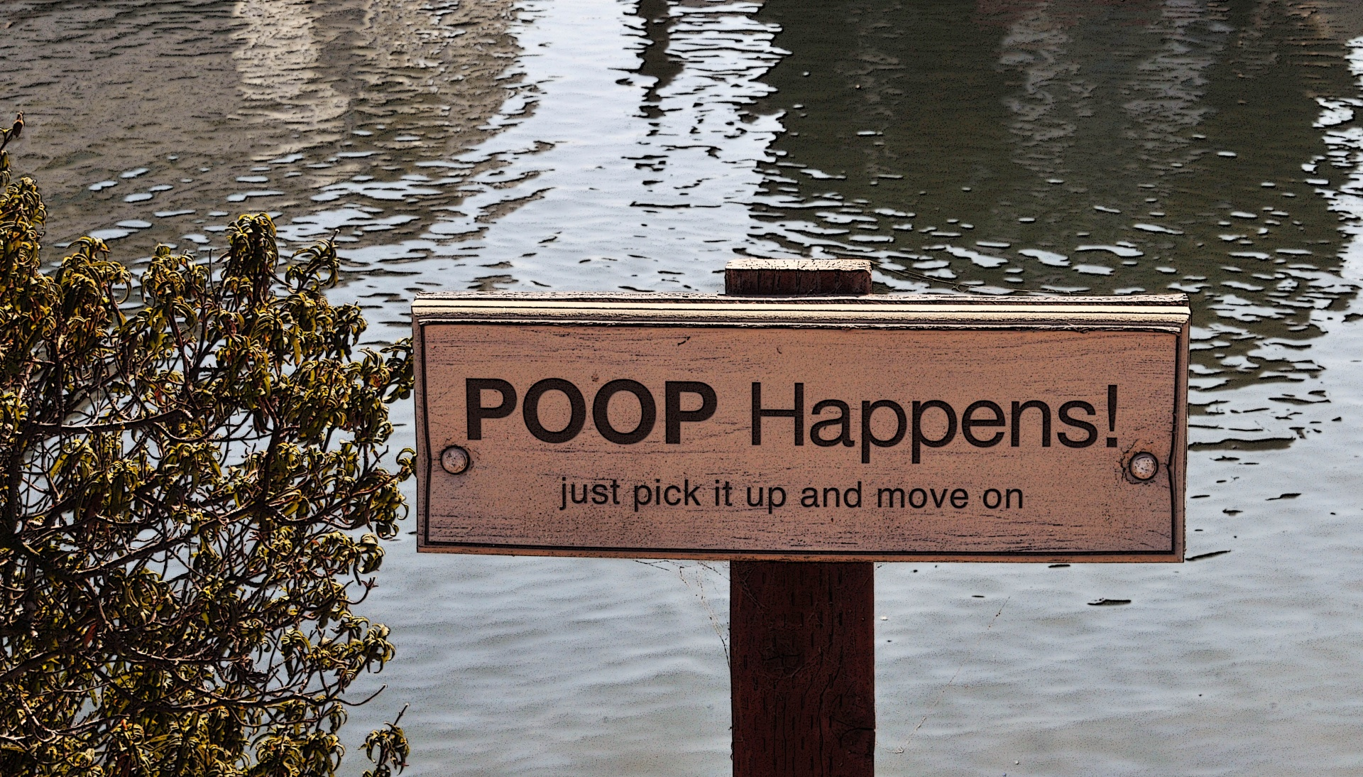 Poop 101 A Beginner S Guide To Reading Your Own Poop
