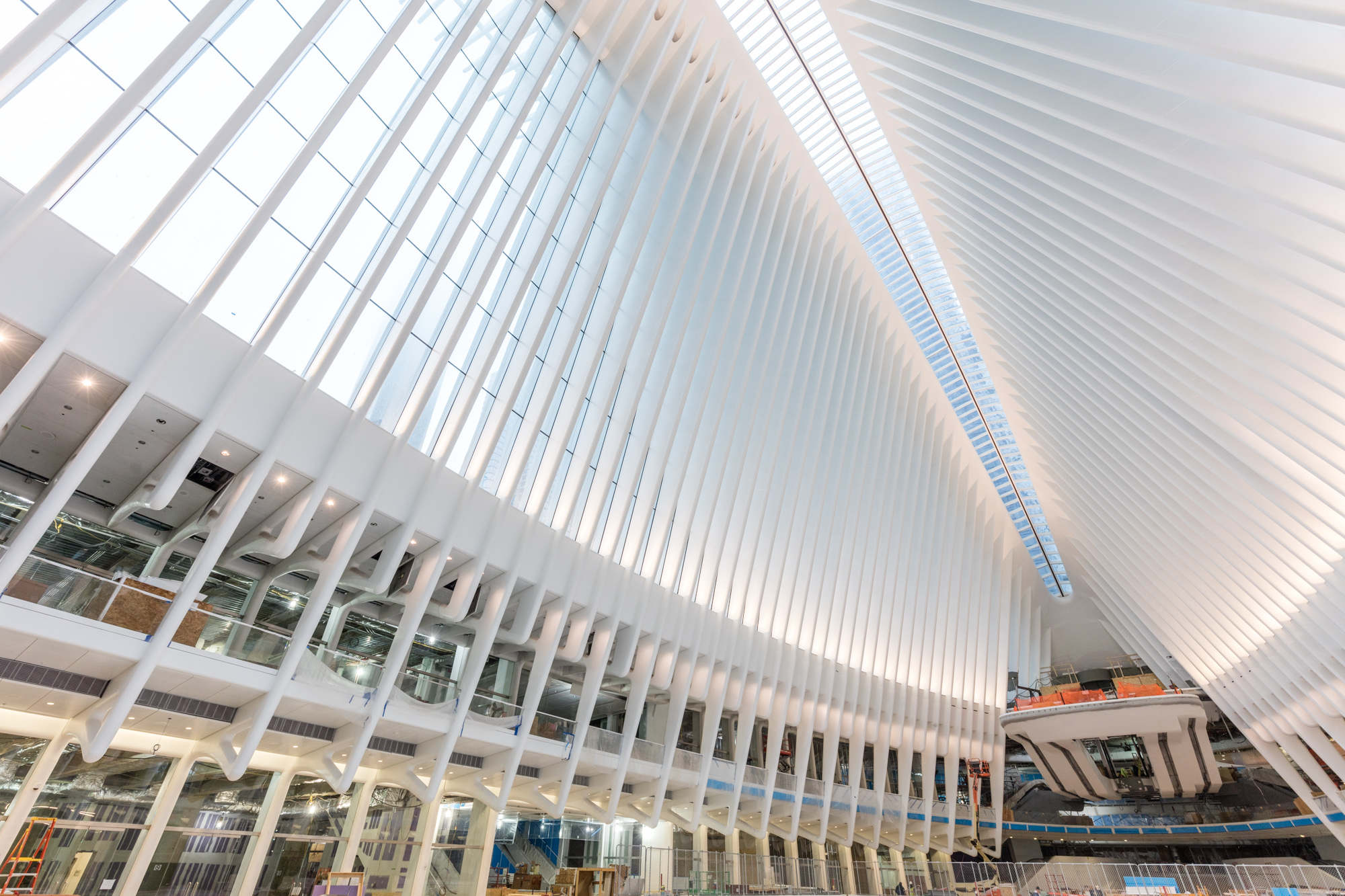 World Trade Center Transportation Hub Curbed Ny