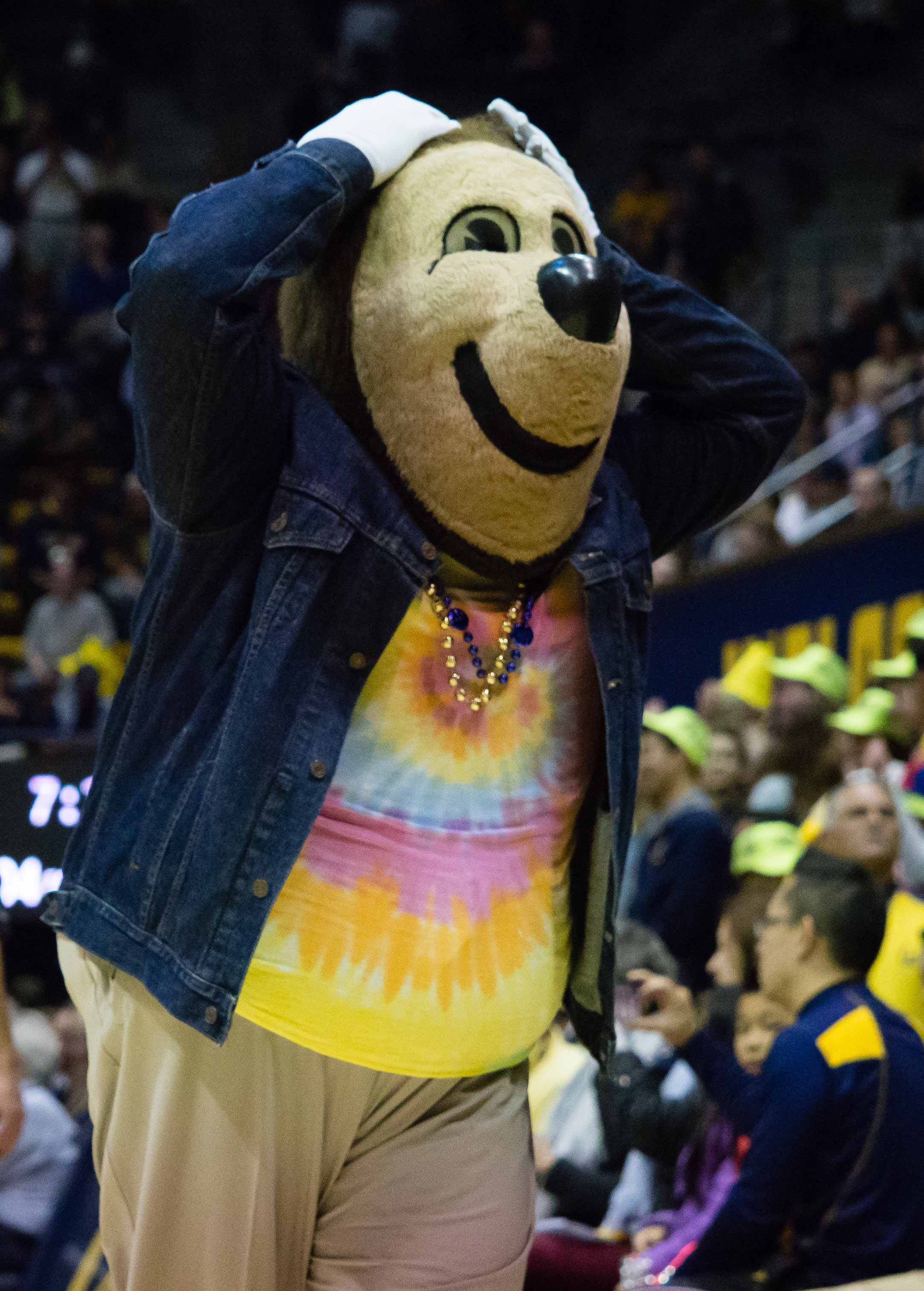 Cal basketball recruiting commit: Grant Anticevich ...